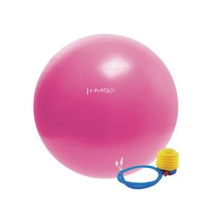 YB01 gymnastic ball 55 cm pink