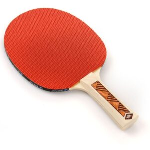 Table tennis bats Donic Champs 200 22109