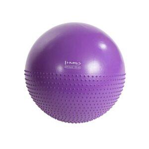 HMS YB03 55cm purple gymnastic massage ball