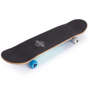 Meteor Salty 22650 skateboard